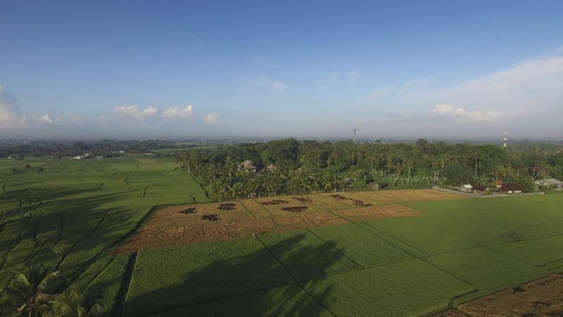 Kaba Kaba Estate