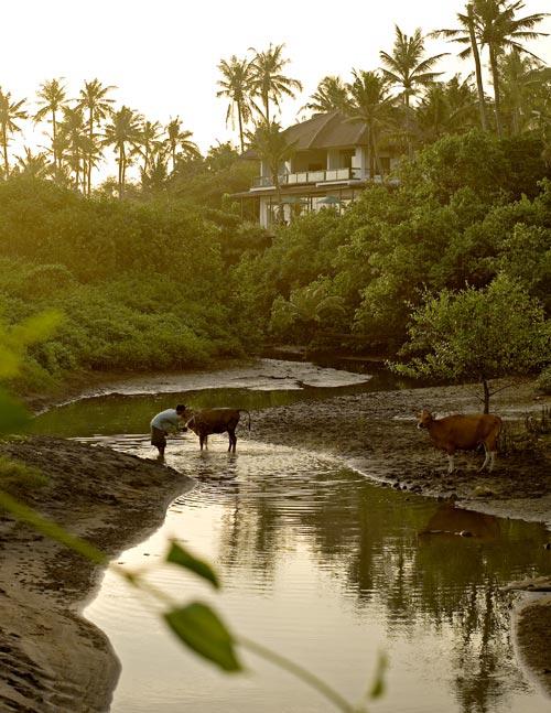 The Shores Villa