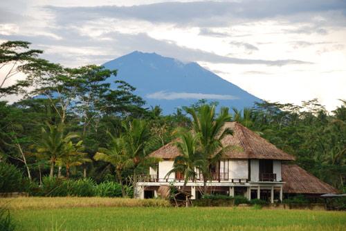 Villa Amala